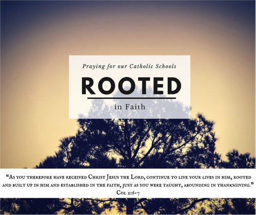 Rooted in Faith - new schedule for the New Year