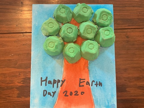 Bode's Earth Day project
