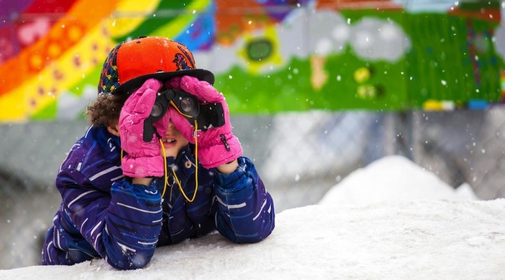 Snowball Spotter